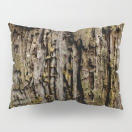Old Wood Close up Pillow Sham