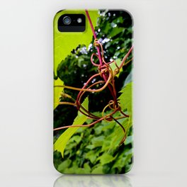 A twisting knot of grapevines iPhone Case