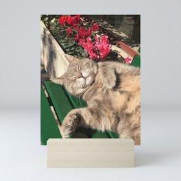Cornelia The Cat Mini Art Print