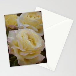 Rose 313 Stationery Cards