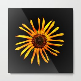 Think Flowers - Spikey Sunflower Metal Print