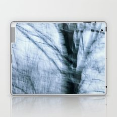 Winter Wind Laptop & iPad Skin