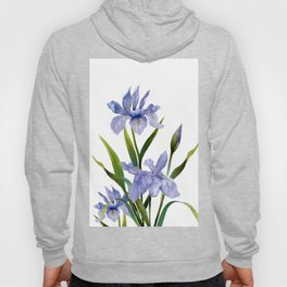 Purple Iris Hoody
