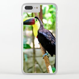 Yellow-Throated Toucan Clear iPhone Case