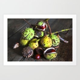 Still Life with CHESTNUTS Art Print
