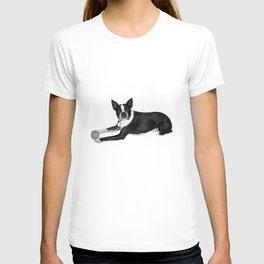 Fetch Boston Terrier B/W T-shirt