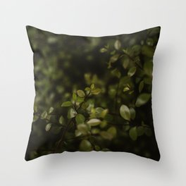 Maidenhair Vine Plant Printable Wall Art | Floral Flower Botanical Nature Outdoors Macro Photography Print Throw Pillow