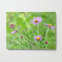 You belong among the wildflowers Metal Print