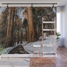 Sequoia's Standing Guard Wall Mural