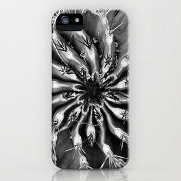 SNOWSPIRAL iPhone Case