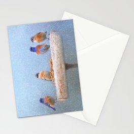 Bluebird Storm Stationery Cards