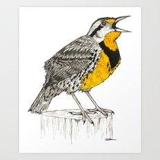 Eastern Meadowlark Art Print