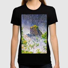 Rock in the falls T-shirt