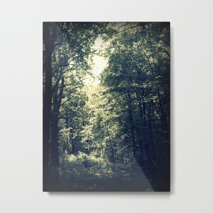 Pour a Little of that Sunlight On Me Metal Print