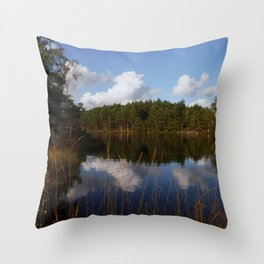 lake Throw Pillow