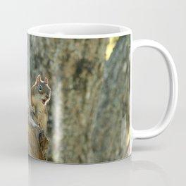 Brown Squirrel Coffee Mug