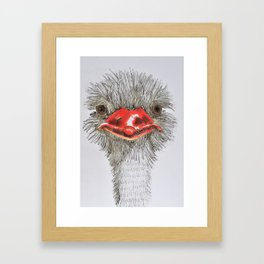 Ostrich Framed Art Print