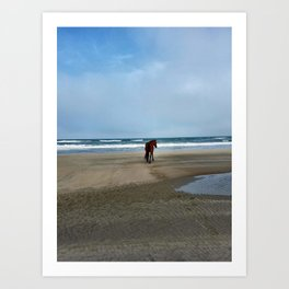 Willd pony of OBX Art Print