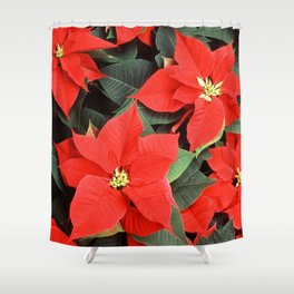 Beautiful Red Poinsettia Christmas Flowers Shower Curtain