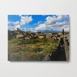Poppies in Pompeii Metal Print