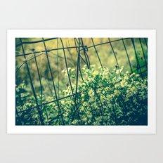 Bloom With Wild Abandon Art Print