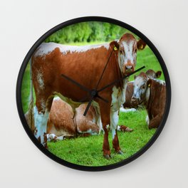 Cow, Cattle Wall Clock