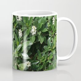 green/white Coffee Mug