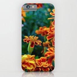 Marigold Garden iPhone Case