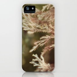 Pine and bokeh iPhone Case