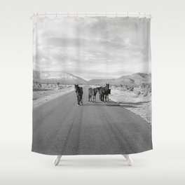 Spring Mountain Wild Horses Shower Curtain