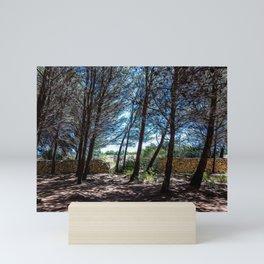 Maritime pine forest in Salento Mini Art Print