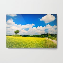 lonely tree in the fields of Italy Metal Print