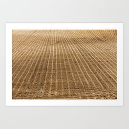 plowed agricultural field Art Print