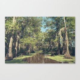 Swampland Canvas Print