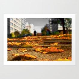 Leaves on The Sidewalk Art Print
