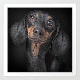Drawing Dog breed dachshund Art Print