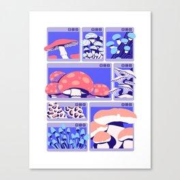 C:\WINDOWS\FUNGUY Canvas Print