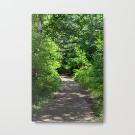 Forest road in the forest Metal Print