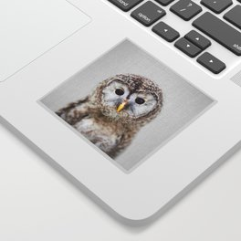 Baby Owl - Colorful Sticker