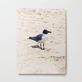 Shore Life Metal Print