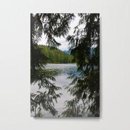trees and beyond Metal Print
