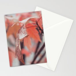 Maple Leaves After Rain Stationery Cards