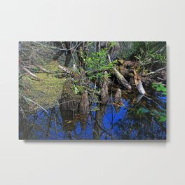 Blue Reflections in the Slough Metal Print