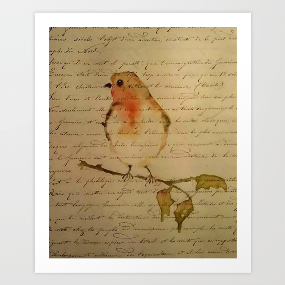 Robin Redbreast Art Print by Patridew (PRN8055540) photo