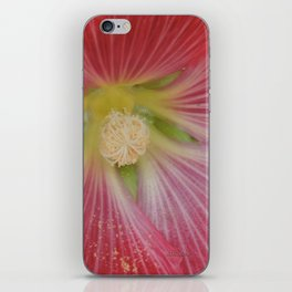 Heart of a Hollyhock Blossom iPhone Skin