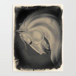 Lusitano Horse Litho equine art Poster