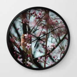 Peek-A-Boo - Spring Finch Wall Clock