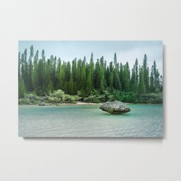 Nature corner at the secluded Natural Pool on Isle of Pines in New Caledonia. Metal Print