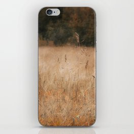 Äspo Ecological Country iPhone Skin