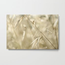 Soft Golden Field Metal Print